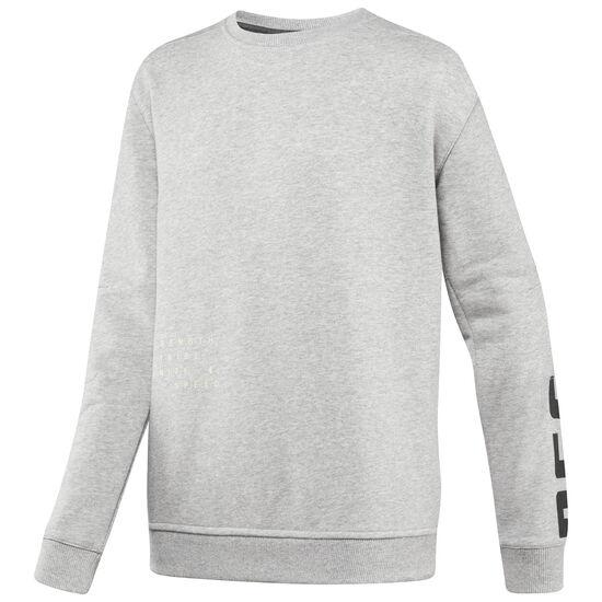 Reebok - Boy's Rebelz Crewneck Sweatshirt Medium Grey Heather BP8045