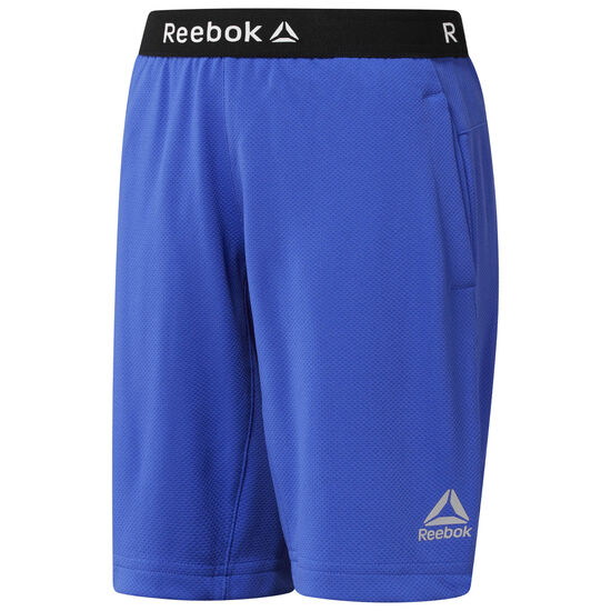 Reebok - Boys Workout Ready Shorts Acid Blue CG0318