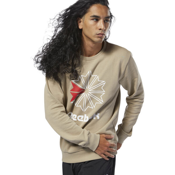 Classics French Terry Big Iconic Crewneck Beige DM5158